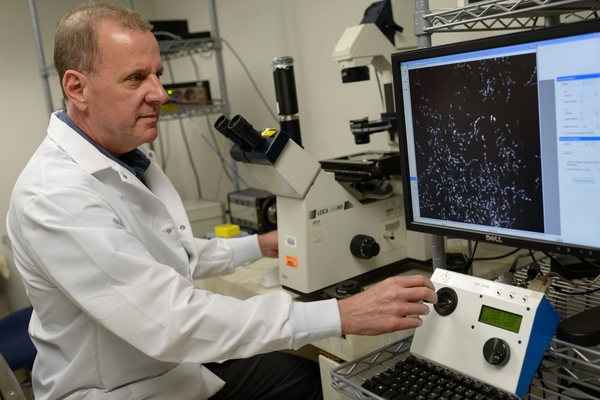 Dr. Burne has identified a bacteria researchers think fight the bad bacteria that form cavities.