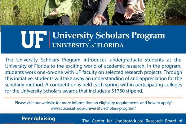 2019 University Scholars Program Flyer
