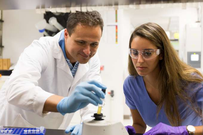 Students working in the UF College of Dentistry labs.